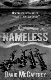 Nameless - David McCaffrey